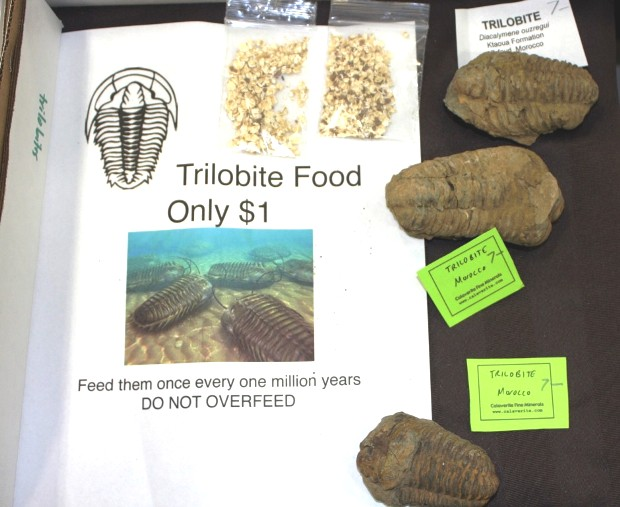 Trilobite Food